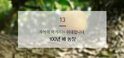 100년배 농장